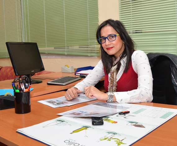 creatio-site-web-algerie-SEO-hebergement-publicite-facebook- genhyal-prix